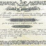 Ippica Vicentina per la Propagazione e Miglioramento della Specie del Cavallo Soc.-1