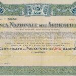 Banca Nazionale dell'Agricoltura-2