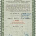 Riserie Virginio Curti S.p.A.-1