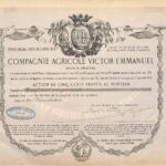 Agricole Victor – Emmanuel Compagnie-3