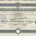 Rumianca S.p.A.-2