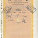 Rumianca S.p.A.-21