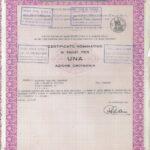 Rumianca S.p.A.-66