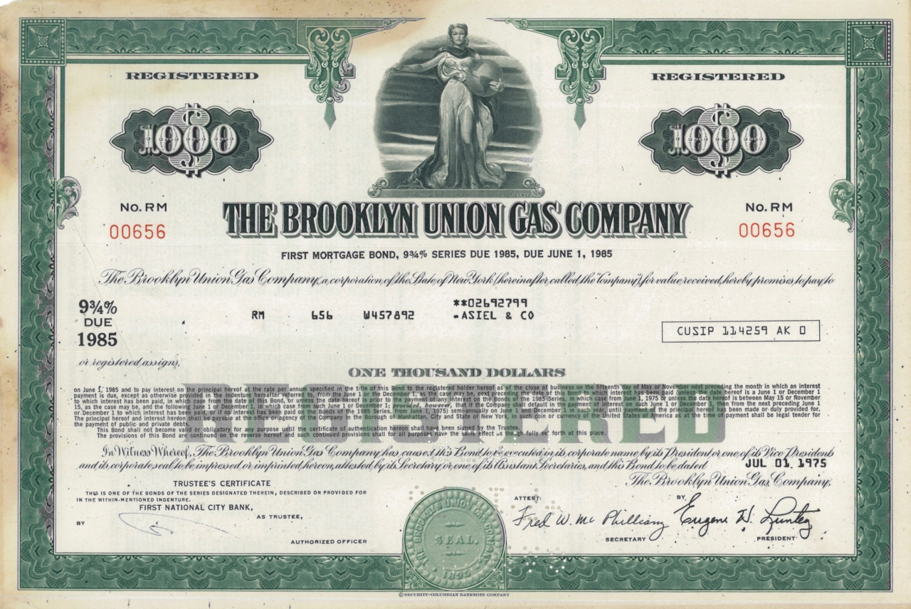 The Brooklyn Union Gas Company
