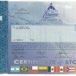 America Online – Latin America, Inc.-1