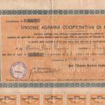 UNIONE AGRARIA COOPERATIVA DI PONTEDERA-1