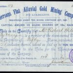 Andersons Flat Alluvial Gold Mining Company NL-1