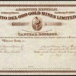 Rio Del Oro Gold Mines Limited-1
