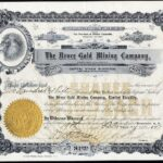 Bruce Gold Mining Company Limited Liability-1