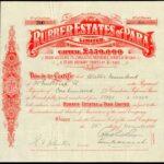 Rubber Estates of Para Ltd-2
