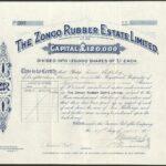 Zongo Rubber Estate Ltd-1